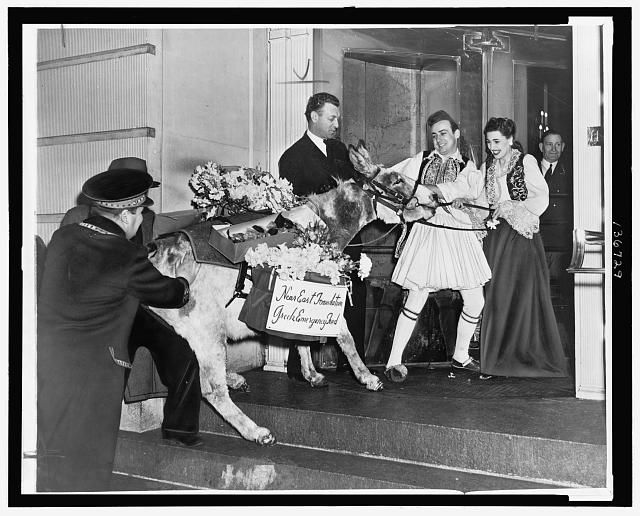 [Man and woman in traditional Greek costumes pulling a burro with flower packs on its back into the Ritz Carlton Hotel, New York City, as part of a fund raising activity for the Greek Emergency Fund]