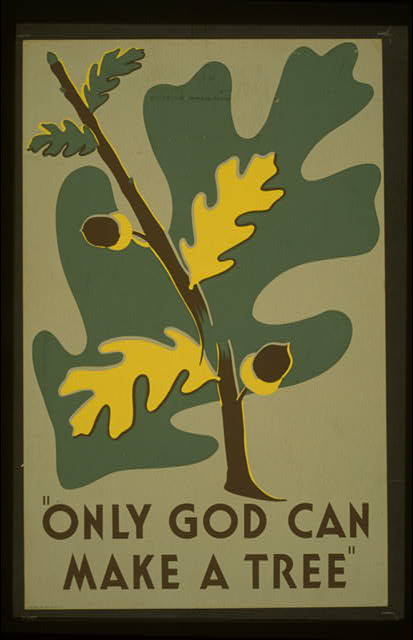 """Only God can make a tree"""