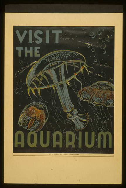 Visit the aquarium