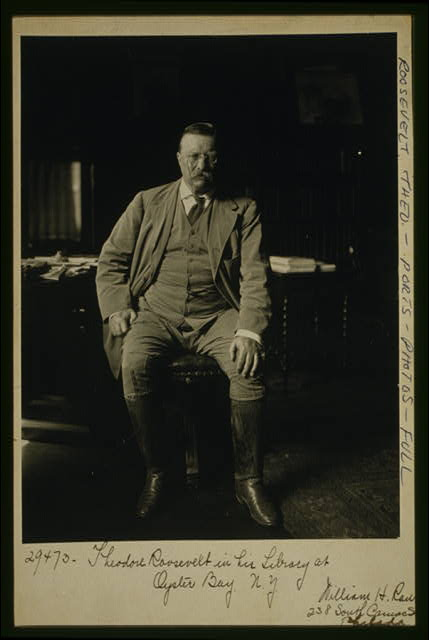 Theodore Roosevelt in his library at Oyster Bay N.Y.