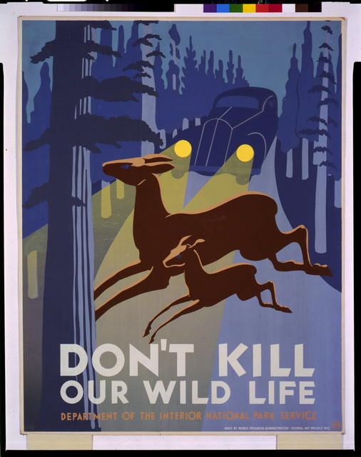 Don&#39;t kill our wild life