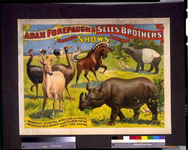 Adam Forepaugh & Sells Brothers enormous shows combined. Wondrous Sumatra, African and South-American wild beasts and birds, ...