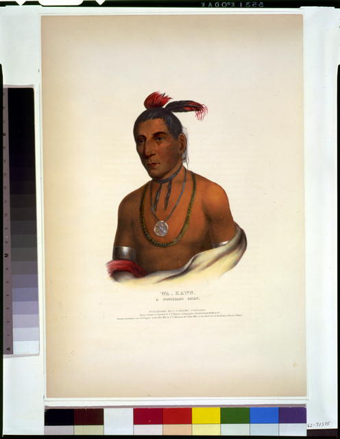 Wa-Kawn, a Winnebago chief