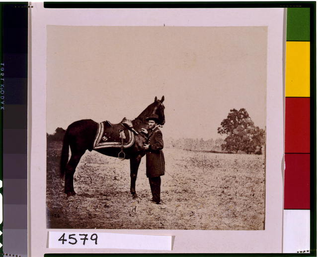 "[Ulysses S. Grant, full-length portrait, facing left, standing alongside his war horse, ""Cincinnati""]"