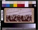color film copy transparency