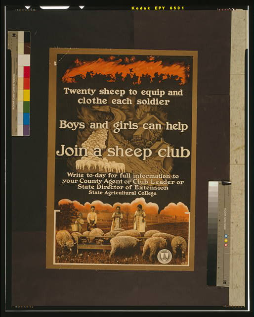 Join a sheep club Twenty sheep to equip and clothe each soldier /