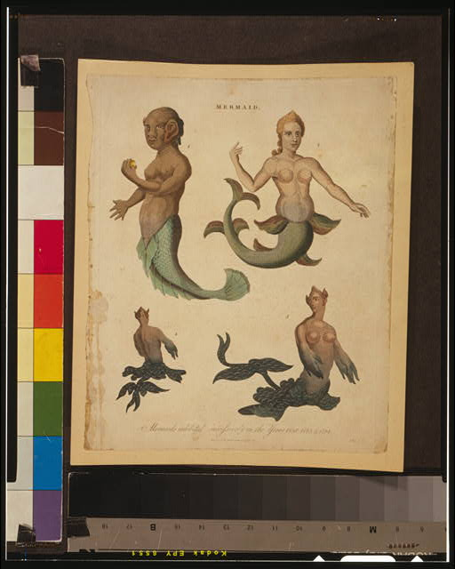 Mermaid--Mermaids exhibited successively in the Years 1758, 1775, & 1794