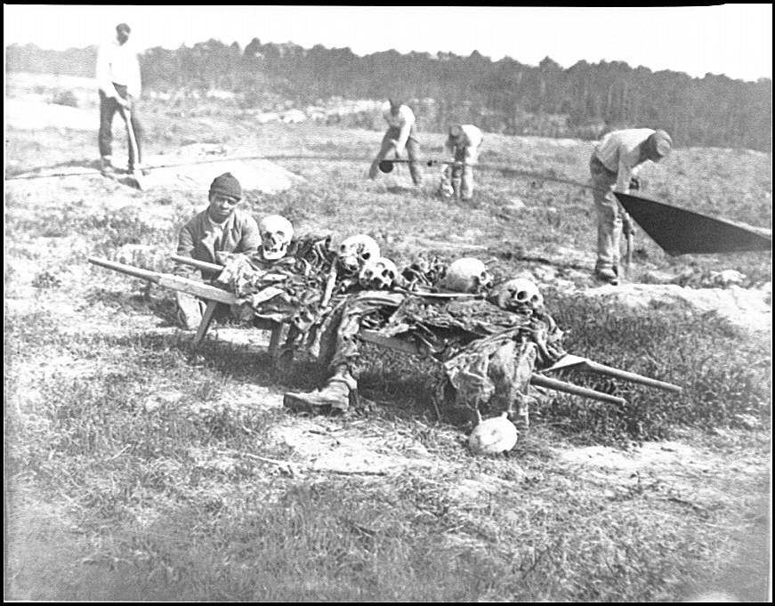 [Cold Harbor, Va. African Americans collecting bones of soldiers killed in the battle]