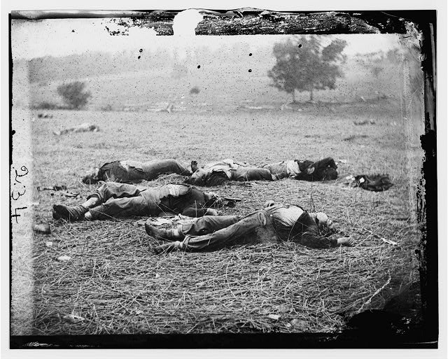 [Gettysburg, Pa. Bodies of Federal soldiers, killed on July 1, near the McPherson woods]