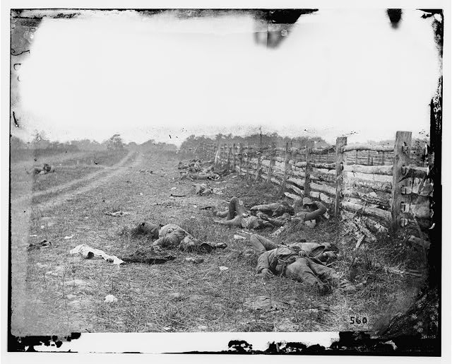 [Antietam, Md. Confederate dead by a fence on the Hagerstown road]