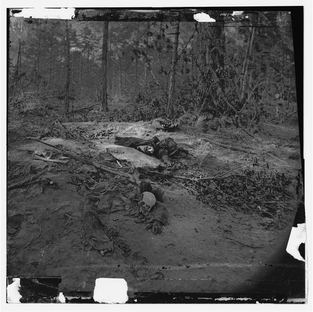 [Cold Harbor, Va., vicinity. Unburied dead on the battlefield of Gaines' Mill]