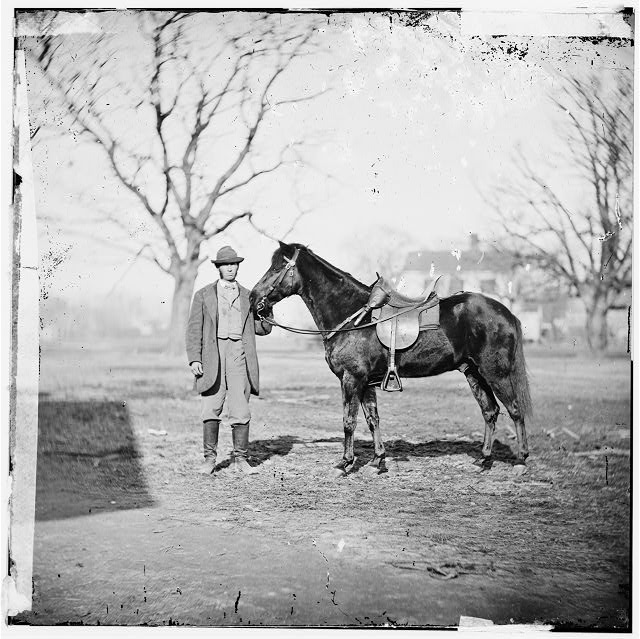 City Point, Virginia. Gen. U.S. Grant's horse. JEFF DAVIS