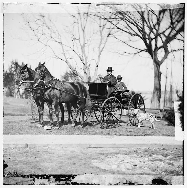 [City Point, Virginia.] Gen. Rufus Ingalls in buggy with colored boy