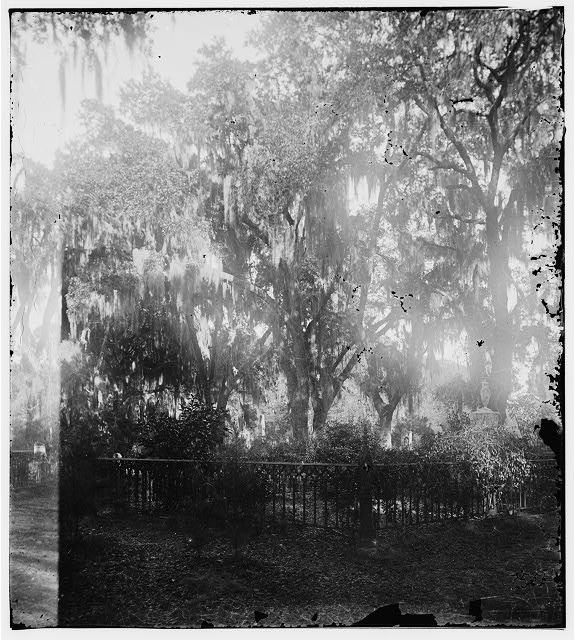 [Savannah, Georgia. View of cemetery]