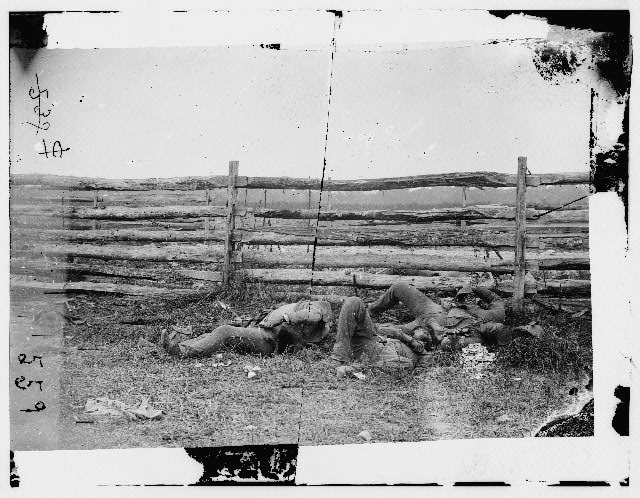 Antietam, Maryland. Dead of Stonewall Jackson's Brigade by rail fence on the Hagerstown pike
