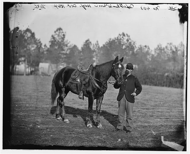 Petersburg, Virginia. Capt. Edward A. Flint's horse. Headquarters, Army of the Potomac