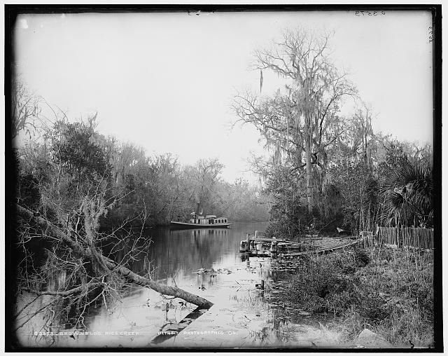 Brown's [landing], Rice Creek