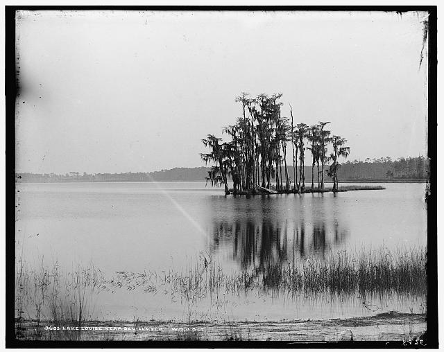 Lake Louise near Seville, Fla.