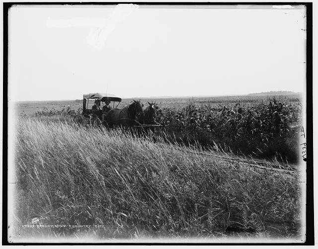 Tracey [i.e. Tracy], Minn., a country road