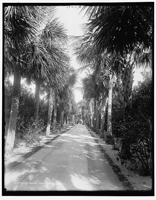 Ocean Ave., Palm Beach, Florida