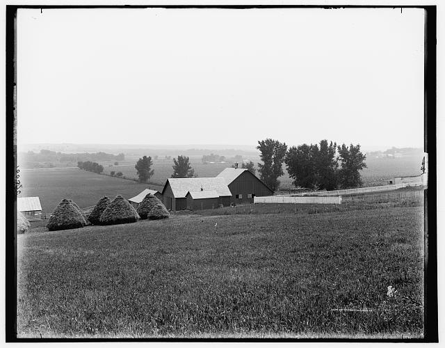 [Farm scene near Arion, Boyer Valley, Iowa]