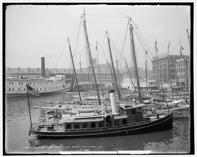 Oyster luggers at the docks, Baltimore, Md.