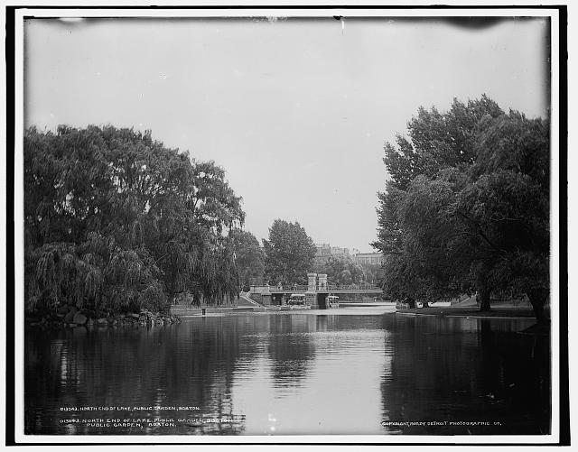 North end of lake, Public Garden, Boston