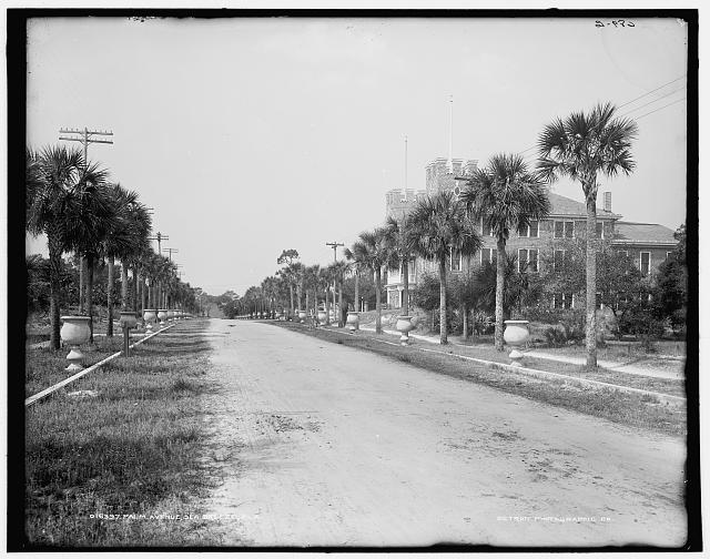 Palm Avenue, Sea Breeze, [i.e. Seabreeze] Fla.