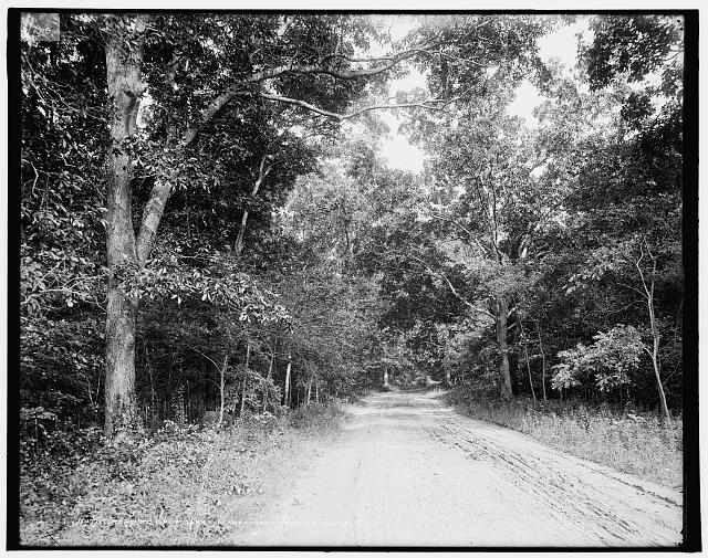 Road to golf links, Manhansett [i.e. Manhasset], Shelter Island, N.Y.