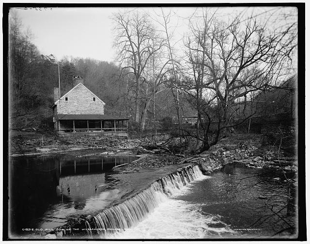 Old mill dam on the Wessahickon [sic], Philadelphia, Pa.