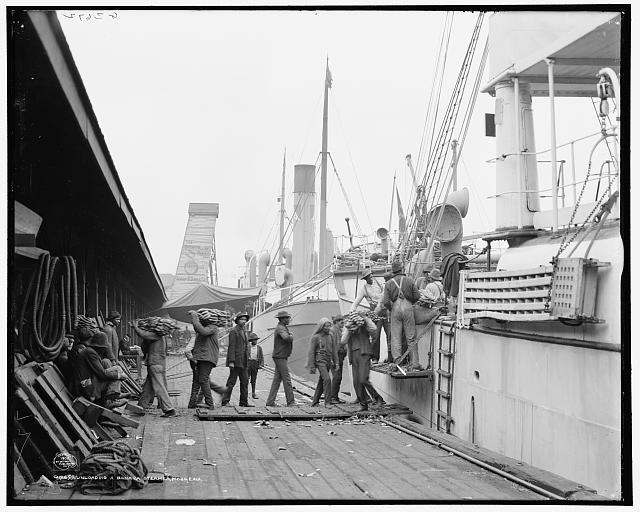 Unloading a banana steamer, Mobile, Ala.