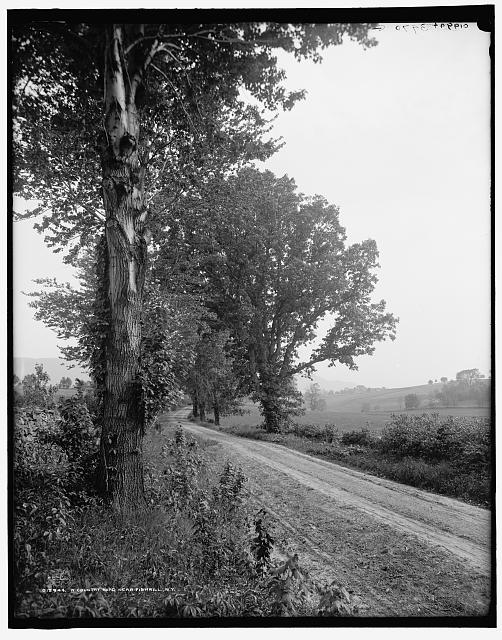 A Country road near Fishkill, N.Y.