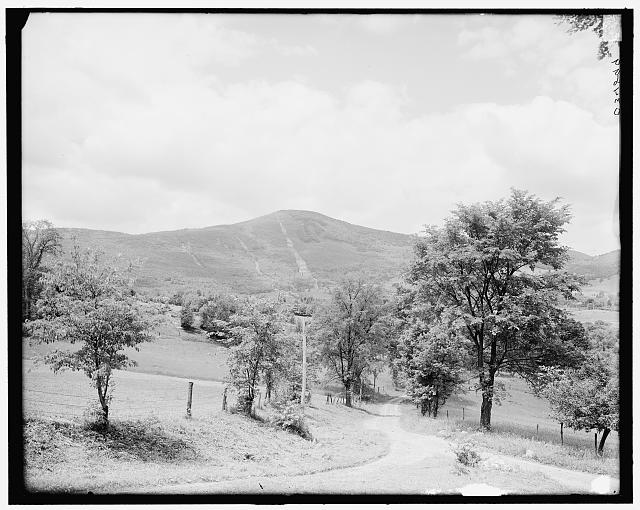 [Greylock Mountain, Adams, Mass.]