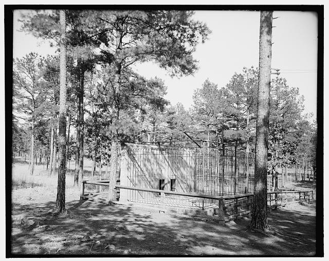 [The Bear pits, Forest Park, Little Rock, Ark.]