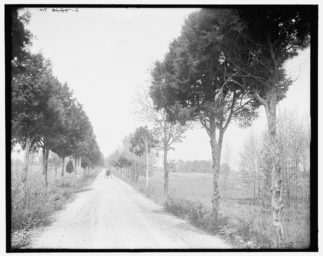 [Alexander Bridge Road, Chickamauga, Ga.]