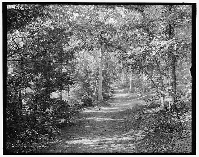 Path along Lake Waban, Wellesley College, Mass.