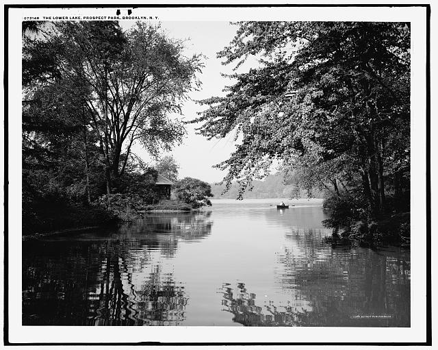 The Lower lake, Prospect Park, Brooklyn, N.Y.
