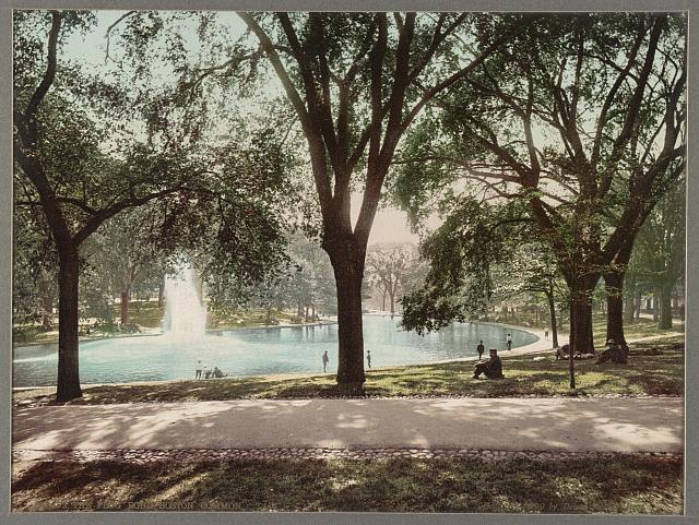The Frog Pond, Boston Common