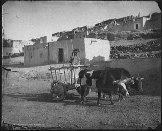 The old carreta, Pueblo of Laguna, N.M.