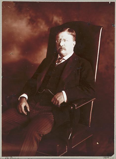 [Theodore Roosevelt, three-quarter length portrait, seated, facing left]