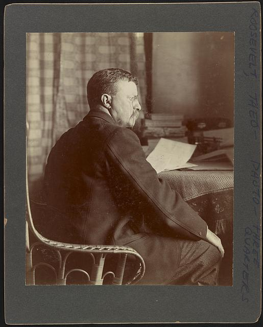 [Theodore Roosevelt seated at a table]