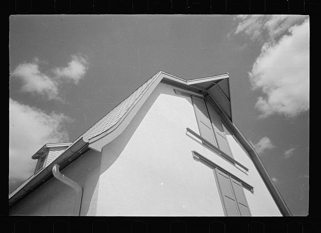 [Untitled photo, possibly related to: Saanen goat, Prince George's County, Maryland]