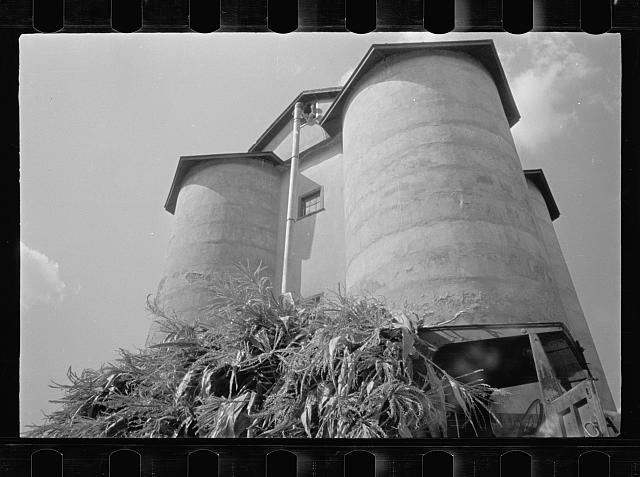 A silo feeding, Prince George's County, Maryland