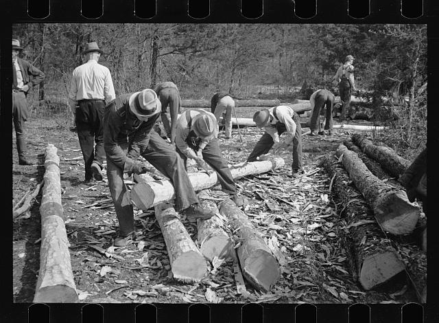 [Untitled photo, possibly related to: Stripping logs to be used in log shelters at Wilson Cedar Forest, near Lebanon, Tennessee]