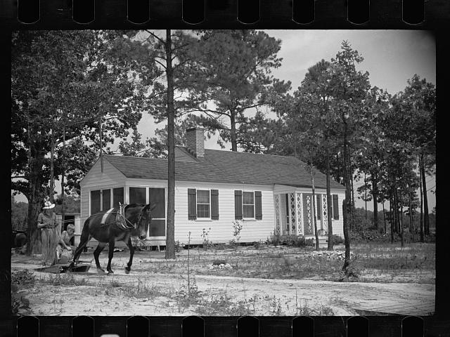 Homestead, Penderlea, North Carolina