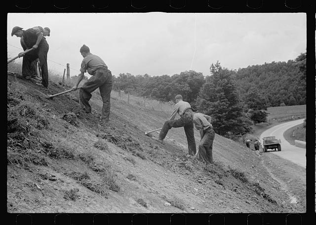 [Untitled photo, possibly related to: CCC (Civilian Conservation Corps) boys working at Tygart Valley Homesteads, West Virginia]
