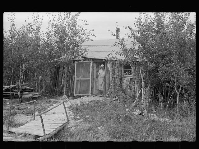 [Untitled photo, possibly related to: Mrs. Howard, who lives with her daughter in one-room cabin they built themselves, Aitkin County, Minnesota]