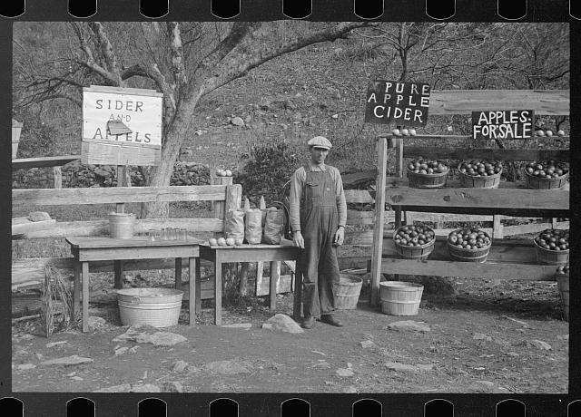 [Untitled photo, possibly related to: A cider and apple stand on the Lee Highway, Shenandoah National Park, Virginia]