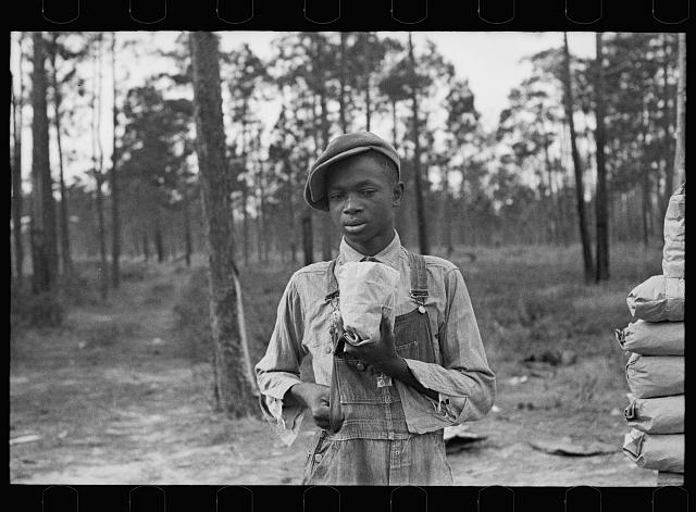 Negro boy selling pecans by road, near Alma, Georgia