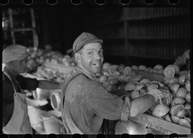 An employee of the grapefruit canning plant at Winter Haven, Florida